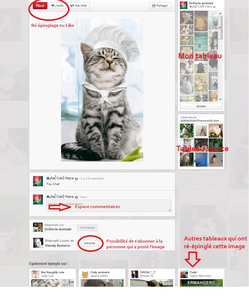 Explication Pinterest