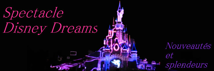 spectacle Disney Dreams